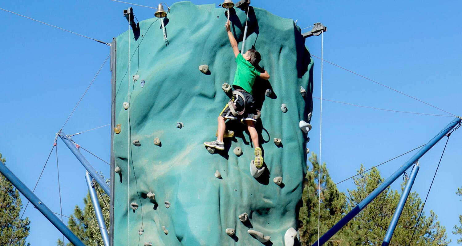 Alpine Entertainment Rock Wall